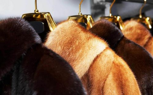 Как постирать мех в домашних условиях, правила и средства для чистки