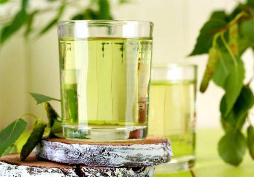 Как правильно приготовить березовый сок, полезные рецепты, видео