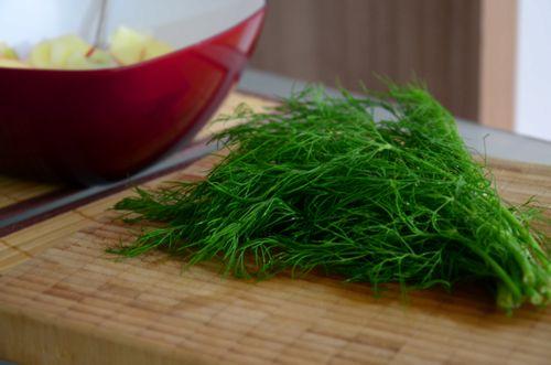 Как заготовить укроп на зиму, сохранить аромат и вкус травы