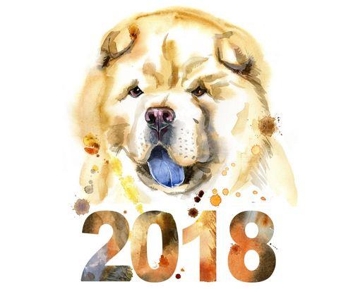 Подарки на новый год 2018 собаки своими руками: в год собаки
