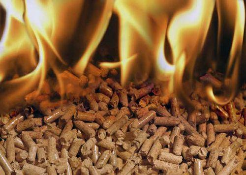 Печи для дома на дровах длительного горения с водяным контуром: фото, видео, отзывы, стоимость