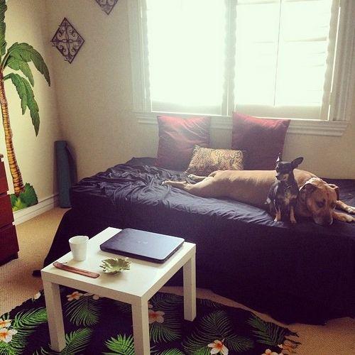 Ремонт гостиной в хрущевке: 10 фото