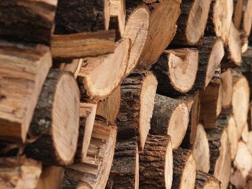 Резьба по дереву для начинающих: идеи и мастер-класс