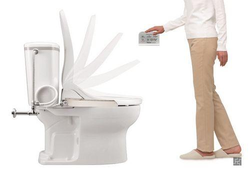 Унитаз с функцие биде - незаменимый помощник в борьбе за чистоту всей семьи. Основные типы и способы реализации  Видео